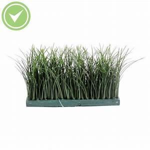 Plante Interieur Haute : plante verte d 39 int rieur haute maison et fleurs ~ Teatrodelosmanantiales.com Idées de Décoration