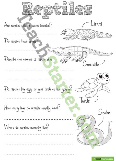 all worksheets 187 reptiles worksheets for kindergarten