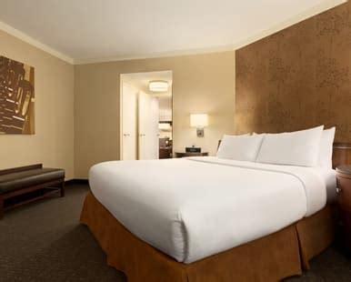 austin hotel rooms accessible rooms embassy suites