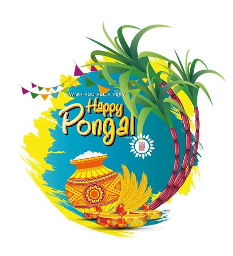 happy pongal happypongal teamigp