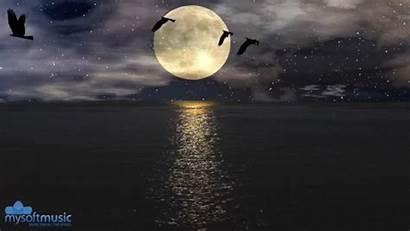 Moon Gifs Animated Meditation Giphy Tuesday Makeagif