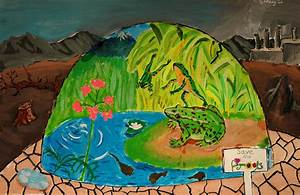 Winners 2013 Kids Art Contest hosted by Frogs Are Green ...