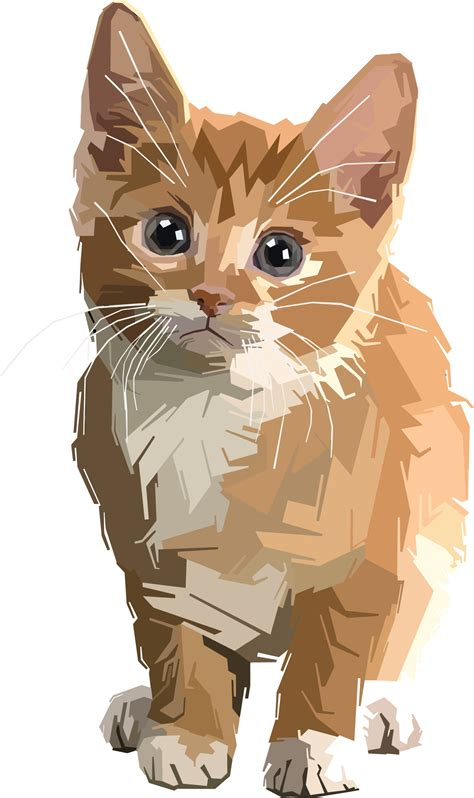 library  tabby cat clipart transparent  png