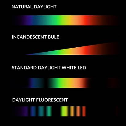 Spectrum Led Daylight Lighting Natural Distribution Visible