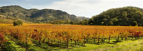 Best Napa Wine Take Some Of The Best Napa Valley Wine Tours