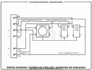 Homelite Bm10680 Generator Parts Diagram For Wiring Diagram