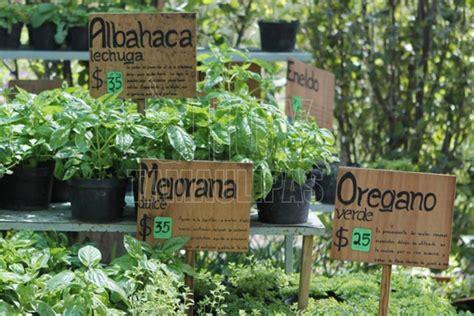 Jardin Médicinal Villers La Ville by Hoy Tamaulipas Crean Jardin Para La Conservacion De