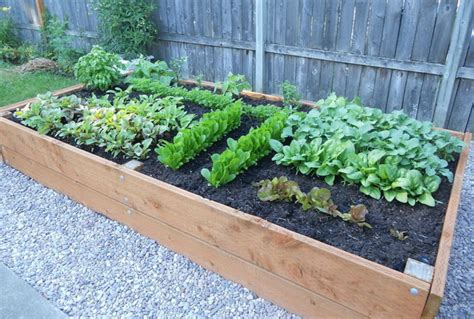 how to build a diy raised wooden garden planting bed step