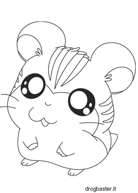 Coloring Pages Of Hamsters And Cats