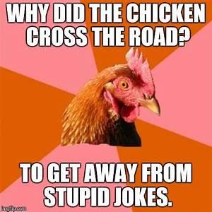 chicken meme jokes - 28 images - anti joke chicken by ...