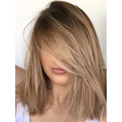 Light Haircolor by Best 25 Light Hair Colors Ideas On Hair Tips