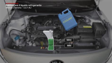 rio rabboccare il liquido refrigerante motore  benzina
