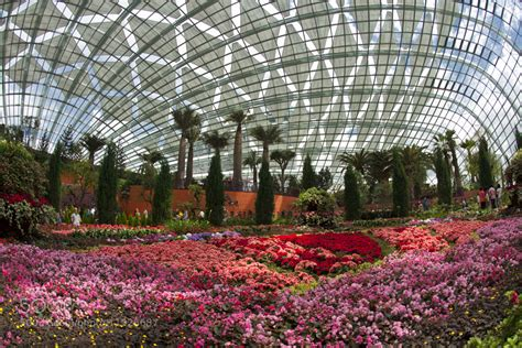 photograph gardens by the bay flower dome by ngan yeow