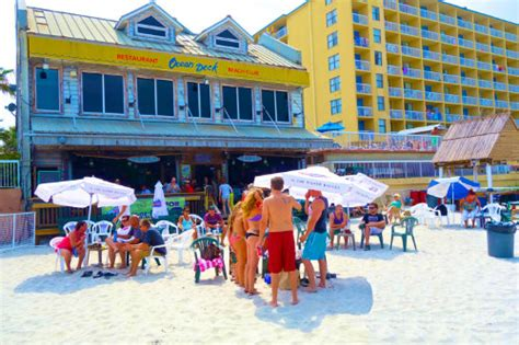 13 ultimate florida beach bars orbitz