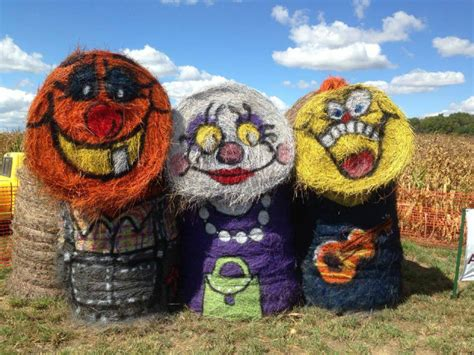 Pumpkin Patch South Bend by Find Corn Mazes In Waterloo Indiana Amazing Fall Fun In
