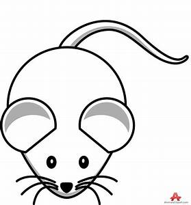 Cute Mouse Computer Drawing - ClipArt Best