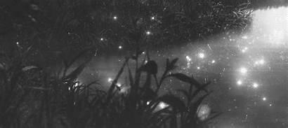 Anime Aesthetic Gifs Nature Wattpad Scenery Moon