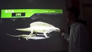 Petrolacosaurus - YouTube