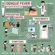 kmhouseindia: Dengue Fever
