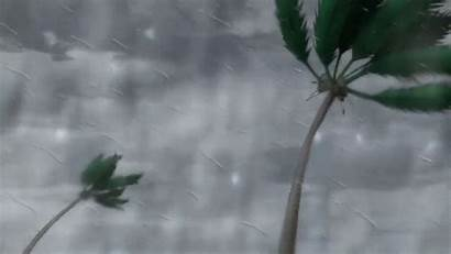 Wind Anime Storm Sound Soundeffects