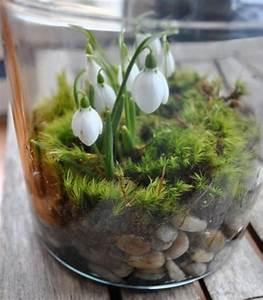 terrarium pour plantes tuto pour le faire et plus de 70 With decoration d un petit jardin 11 boule de neige faire une bataille