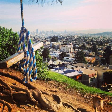 swing san francisco hike up billy goat hill and you ll find a tree swing that