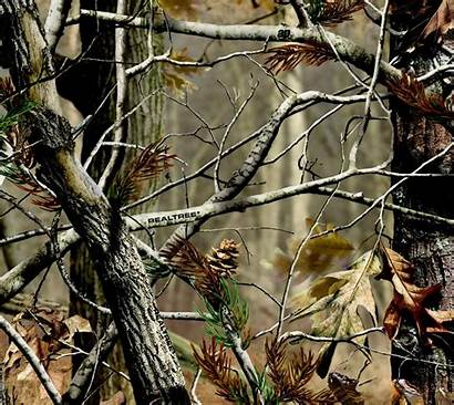 Realtree Camo Camouflage Hunting Wallpapers Tree Backgrounds