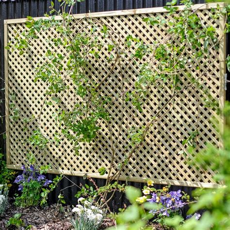 Stand Alone Garden Trellis by Grange Lilleshall Lattice Trellis Garden