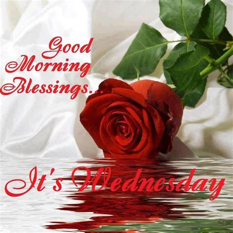 good morning blessings  wednesday pictures   images  facebook tumblr
