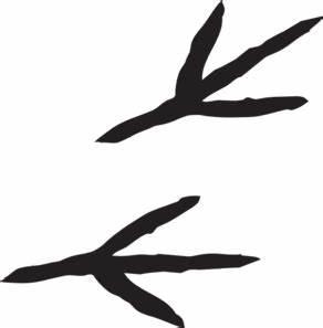 Talon Prints Clip Art at Clker.com - vector clip art ...