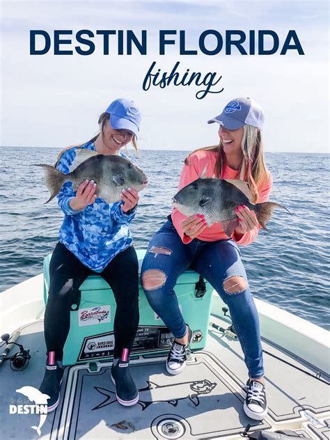 fishing destin florida charters charter boat rated hooked private things area