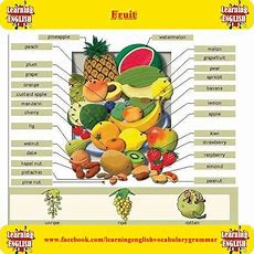 51 Best Food, Drink, Fruits, Vegetables Images On Pinterest  English Vocabulary, Languages And