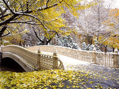 new york web central park world visits new york central park the hub in the