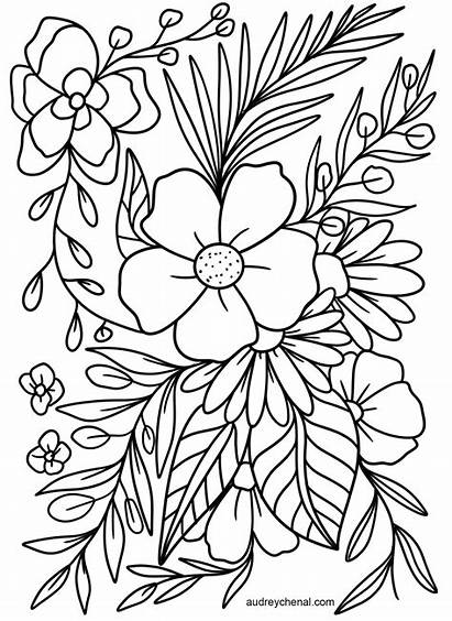 Coloring Flowers Printable Flower Adults Floral Realistic