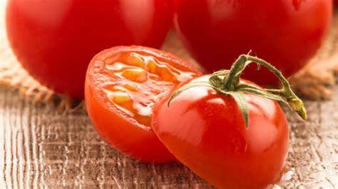 keren 30 gambar kartun pohon tomat