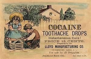 Cocaine Medicine Ad, 1885 Photograph by Granger