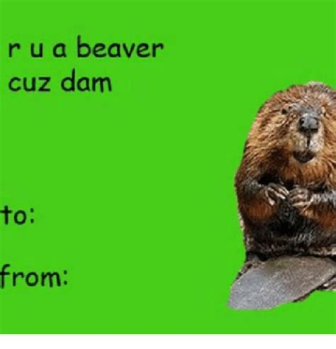 Beaver Meme - r u a beaver cuz dam to from meme on sizzle