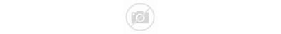 Market Accurate Metals Precious Prices Need