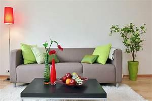 Bambus Pflegen Zimmer : zimmerpflanzen als dekoration passend ausw hlen und ~ Lizthompson.info Haus und Dekorationen