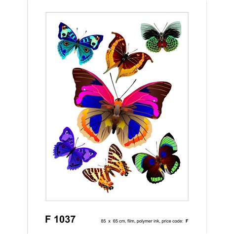 colored stickers colored butterfly sticker