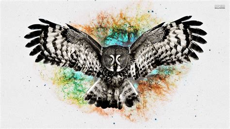 Background Digital Owl Wallpaper owl wallpapers wallpaper cave