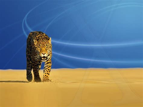 3d Animated Wallpapers For Windows Xp Free - hd animated wallpapers for windows 7 free