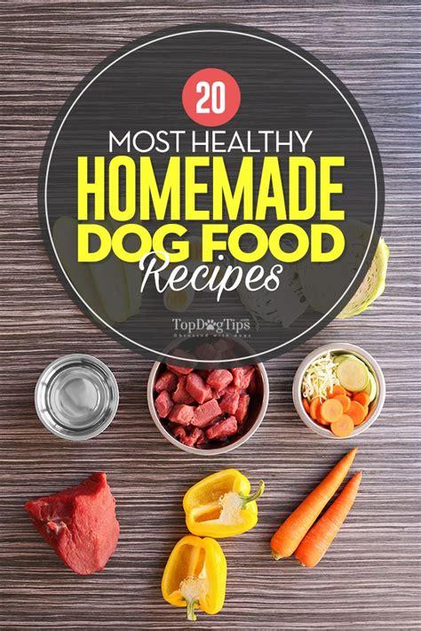 healthy homemade dog food recipes  fido  love
