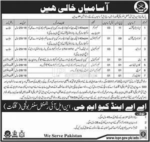 Pak Army NLI Regimental Center Gilgit Jobs 2017 - PaperPk Jobs