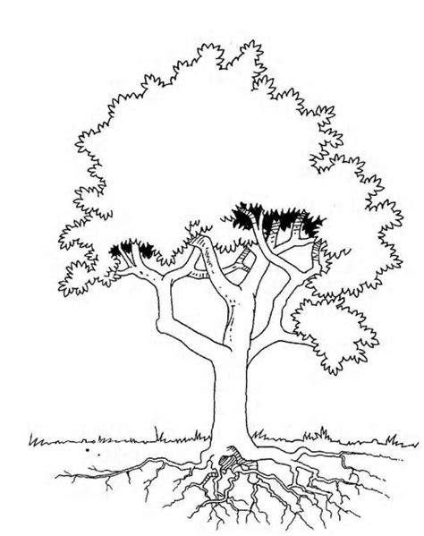 Kleurplaten Bladeren Bomen by N 19 Kleurplaten Bomen En Blaadjes