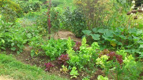 Garten Anlegen  Tipps Und Infos Zur Gartengestaltung