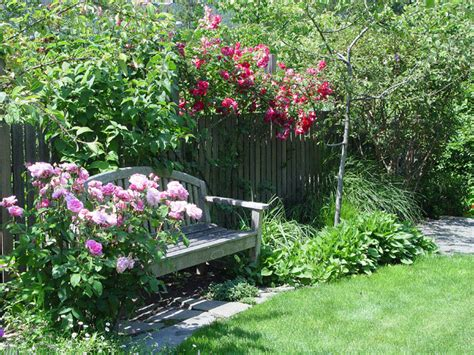 larkspur garden design a larkspur garden traditional landscape san francisco by simmonds associates inc