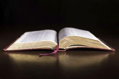 surprise sayings  jesus christ  jesus declare