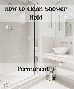 Top ways to clean your shower mold how to get rid house for How to get rid of mould in shower sealant