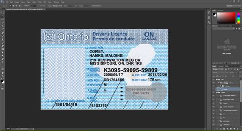 nwt canada driving licence psd template  psd template